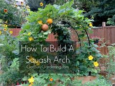 Build this gorgeous squash arch to add beauty and height to your vegetable garden. My unique DIY squash arch design is an inexpensive project that doesn't take much time to make. Get the full step-by-step squash arch instructions now. Veg Garden, Garden Trellis, Edible Garden, Lawn And Garden, Arch Trellis, Trellis Ideas, Vegetable Gardening, Container Gardening, Plantar