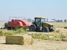 Baling rice straw in the Grimes area.
