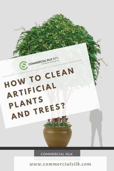 The leaves, the petals and even stem of artificial plants and flowers tend to lose their sheen over time as dust collects over it. Here are the simple ways how-to clean artificial plants and trees. Artificial Indoor Plants, Cleaning, Flowers, Artificial Plants, Royal Icing Flowers, Floral, Florals, Flower, Bloemen
