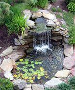 backyard - Bing Images