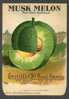 EVERITT'S SEED STORE,  Mush Melon 254, Vintage Seed Packet