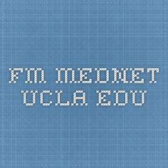 fm.mednet.ucla.edu Fruit and Veg. calorie chart