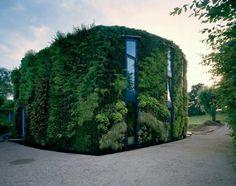 10 Stunning Vertical Gardens