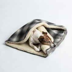West Paw Dog Beds Canada – Jaunts™ and Strolls™ · Zogoflex® Dog Toys · Fabric Dog Toys · Dog Beds …. of your furry friend and their favorite West Paw toy or bed by using Jack Russell Terrier, Jack Russell Dogs, Dog Blanket, Dog Travel, Sleeping Dogs, Little Dogs, Large Dogs, Dog Toys, I Love Dogs