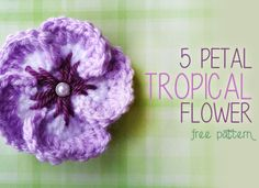 5 Petal Tropical Flower