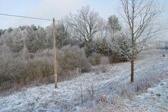 zimową porą...