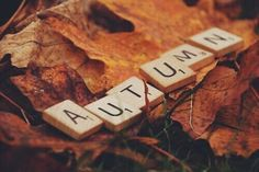 loveliest autumn | Tumblr