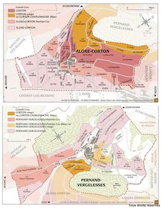 Appellations of Burgundy Wine Infographic, Infographics, Vin France, French Wine Regions, Wine Paring, Wine Advertising, Chateauneuf Du Pape, Wine Education, Wine Design