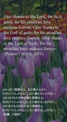 Give thanks to the Lord, for he is good, for his steadfast love endures forever. Give thanks to the God of gods, for his steadfast love endures forever. Give thanks to the Lord of lords, for his steadfast love endures forever; (Psalms 136:1-3, ESV)136:1主に感謝せよ、主は恵みふかく、 そのいつくしみはとこしえに絶えることがない。 136:2もろもろの神の神に感謝せよ、 そのいつくしみはとこしえに絶えることがない。 136:3もろもろの主の主に感謝せよ、 そのいつくしみはとこしえに絶えることがない。 (詩篇 口語訳)