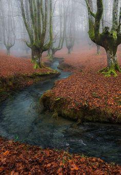 Misty Morning (by Javier de la Torre García).