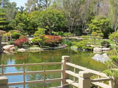 Best of Long Beach, Rejuvenate in Earl Burns Miller Japanese Garden Long Beach, Garden Bridge, Burns, California, Outdoor Structures, Japanese, Japanese Language, The California