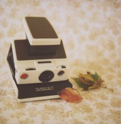 polariod camera...y u so cute???