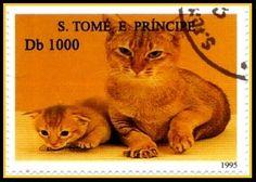 Timbre Sao Tome y principe (Saint-Thomas) 1995 Chat Abyssins ===================== Image.=> http://wamiz.com/chats/abyssin-24 ========================= Série => https://fr.pinterest.com/pin/121526889922406379/ ========================= Multicolore - Dentelé 13,5 x 14 Valeur faciale = 1000 db Référence.Y&T.=:1264C Cotation.2009.= 2,50 €.-.1,50 € ========================= bijoux de Gaby Féerie => http://www.alittlemarket.com/boutique/gaby_feerie-132444.html
