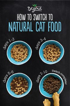When Switching Your Pet To A Natural Cat Diet Slow Change Is Best