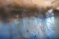 Hannah Mickunas, 2013  #abstract #art #photo #installation #painting #textile