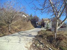 http://bulgaria-life.info/wp-content/gallery/nachalo-yanvarya/dsc03456.jpg