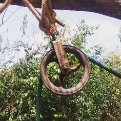 https://flic.kr/p/xNHjEu | #pulley at well-digging site.  #brazil #maranhao #nordeste #nordestebrasileiro