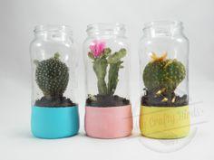 Reciclar envases de vidrio de manera creativa. Diy Planters, Planter Pots, Cool Plants, Mason Jars, Succulents, Recycling, Projects, Crafts, Color