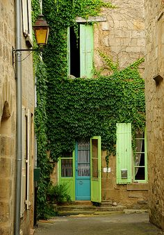 the ivy by S. Lo, via Flickr