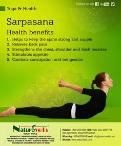 Naturoveda Health World at the forefront of treating chronic diseases and adverse health conditions through Fundamentals of Ayurveda, Unani and Therapeutic Yoga Yoga Sequences, Yoga Poses, Yoga Fitness, Health Fitness, Fitness Tips, Indiana, Different Types Of Yoga, Health World, Yoga Breathing