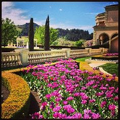 """The gardens at Ferrari-Carano Vineyards and Winery. Villa Fiore (""""house of flowers""""). Wine Tasting Near Me, Wine Tasting Events, Margaret River Wineries, Wine Coolers Drinks, Sonoma Wineries, Sangria Wine, Spanish Wine"""