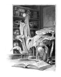 Interior illustration from A Natural History of Dragons by Marie Brennan, art by Todd Lockwood.