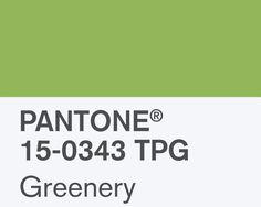 Farbe des Jahres 2017: Pantone Greenery. Als Wandfarbe & Lack online bestellbar auf www.kolorat.de #KOLORAT #Wandfarbe #Greenery