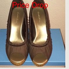 "Carlotte Russe Brown Wedge Open Toe Shoe. Carlotte Russe Brown Wedge Open Toe Shoe. Size 7, Heel Height 4 1/2"". Condition: Never Worn. Charlotte Russe Shoes Wedges"