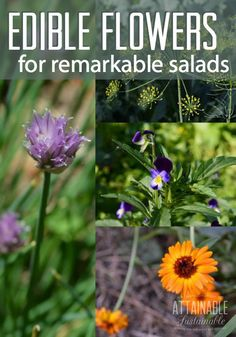 There's an edible resource in your garden that you may have overlooked. Edible flowers add color, flavor, and beauty to homegrown salads.