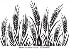 Field of Wheat, Barley or Rye vector visual illustration, black on white background, ideal for bread packaging, beer labels etc. Wheat Drawing, Wheat Tattoo, Basket Drawing, Clipart Black And White, Stock Foto, Pyrography, Line Drawing, Vector Art, Screen Printing