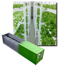 Greens, Lettuces and Herbs CropBox... Grow up the equivalent of an acre of conventional field agriculture or 2,200 sq ft of the highest producing hydroponic greenhouses in 320 sq ft. Stack the Cropbox up to 5 high to produce 5x those yields.