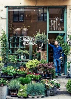 garden shop Holtwood Hipster: Confessions // A Floral Meets Garden Shop Jardin Decor, Lovely Shop, Deco Floral, Shop Fronts, My Flower, Store Design, Garden Inspiration, Planting Flowers, Flowers Garden