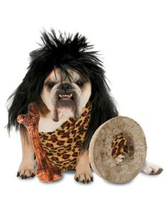 Dog Costume - Bull Dog