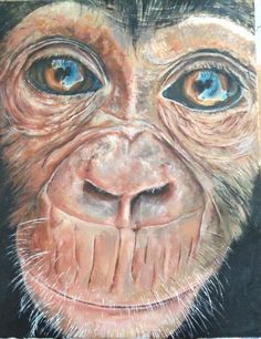 Acrylic monkey painting Pencil Drawings, Art Drawings, Monkey Room, Monkey Art, Cute Giraffe, Pictures To Draw, Drawing Tips, Paint Monkey, Art Projects