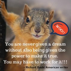 """""""You are never given a dream without also being given the power to make it true. You may have to work for it, however. Peace Quotes, Me Quotes, Motivational Quotes, Inspirational Quotes, Good Morning Animals, Meaningful Life, Squirrels, Law Of Attraction, Great Quotes"""
