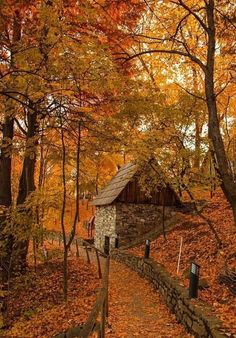 I Love how scenic and beautiful this is. Fall Pictures, Fall Photos, Nature Photos, Fall Images, Beautiful Places, Beautiful Pictures, Fotografia Macro, Autumn Scenes, Autumn Aesthetic