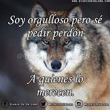 Courage of a Wolf Alpha Romeo, Figure Of Speech, Quotes En Espanol, Wolf Quotes, Wolf Pictures, Wild Wolf, Wolf Spirit, Spanish Quotes, Life Motivation
