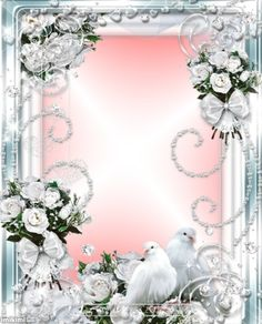 108 Best Wedding Frames Images Wedding Frames Ark Gifs