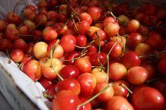 Big, juicy, rainier cherries! Rainier Cherries, South Lake Union, Seattle Neighborhoods, Pike Place Market, Downtown Seattle, Vegetable Seasoning, Farmers Market, Fruit, Big