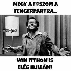 Funny Memes, Jokes, Einstein, Funny Pictures, Politics, Van, Entertaining, Duma, Fanny Pics