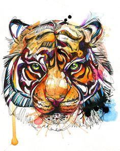 Tigre de Bengala brillante Print 8.5 x 11 por AbbyDiamondDraws