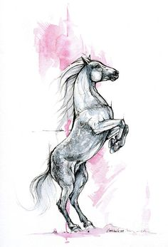 Horse Drawing - Horse Ink Art 2019 09 12 by Angel CiesniarskaYou can find Horse art and more on our website.Horse Drawing - Horse Ink Art 2019 09 12 by Angel Ciesniarska Horse Drawings, Cool Art Drawings, Art Drawings Sketches, Animal Drawings, Drawings Of Angels, Drawing Animals, Horse Tattoo Design, Sketch Tattoo Design, Horse Sketch