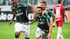 Cleiton Xavier Comemora Gol Palmeiras Internacional Campeonato Brasileiro 06/11/2016