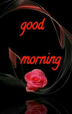 Good morning sister and yours, have a nice Thursday, God bless 😋💖💞☕🍪🐇 Good Morning Wishes Gif, Good Morning Sister, Good Night Wishes, Morning Greetings Quotes, Good Night Sweet Dreams, Good Morning Flowers, Good Morning Everyone, Good Morning Good Night, Day For Night