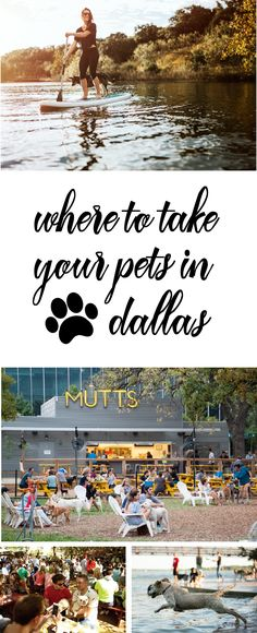 Your pup will feel right at home in one of the many dog-friendly restaurants, hotels, and shops Dallas has to offer.
