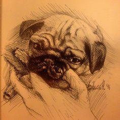 dog. pen on paper