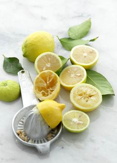Lemon | Matkonation