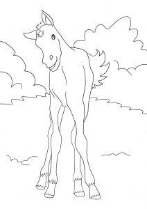 ausmalbilder pferde mit reiterin ausmalbilder pferde kostenlos zum ausdrucken ausmalbilder. Black Bedroom Furniture Sets. Home Design Ideas
