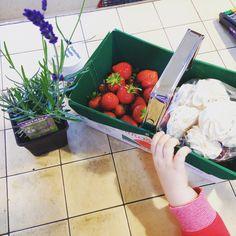 farm shops gloucestershire cotswolds Farm Shop, Family Days Out, Strawberry, Shops, Fruit, Food, Tents, Family Trips, Essen