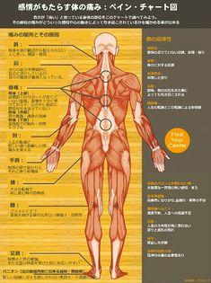 ペインチャート図 体の痛みを感じた時、病院にいっても原因が不明なことも多い。その原因は心の変化や負の感情、いわゆるストレスから来ている場合がある。海外サイトで、どんな感情の変化によって、体のどの部分に痛みを感じるのかがわかるチャート図が紹介されていた。